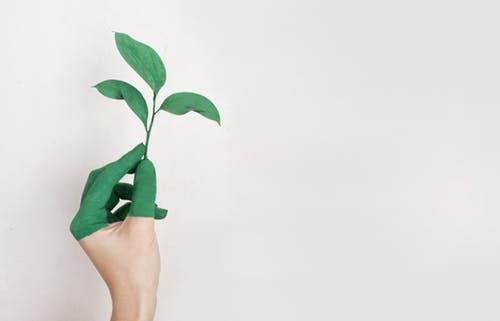 Benefits of Green IT